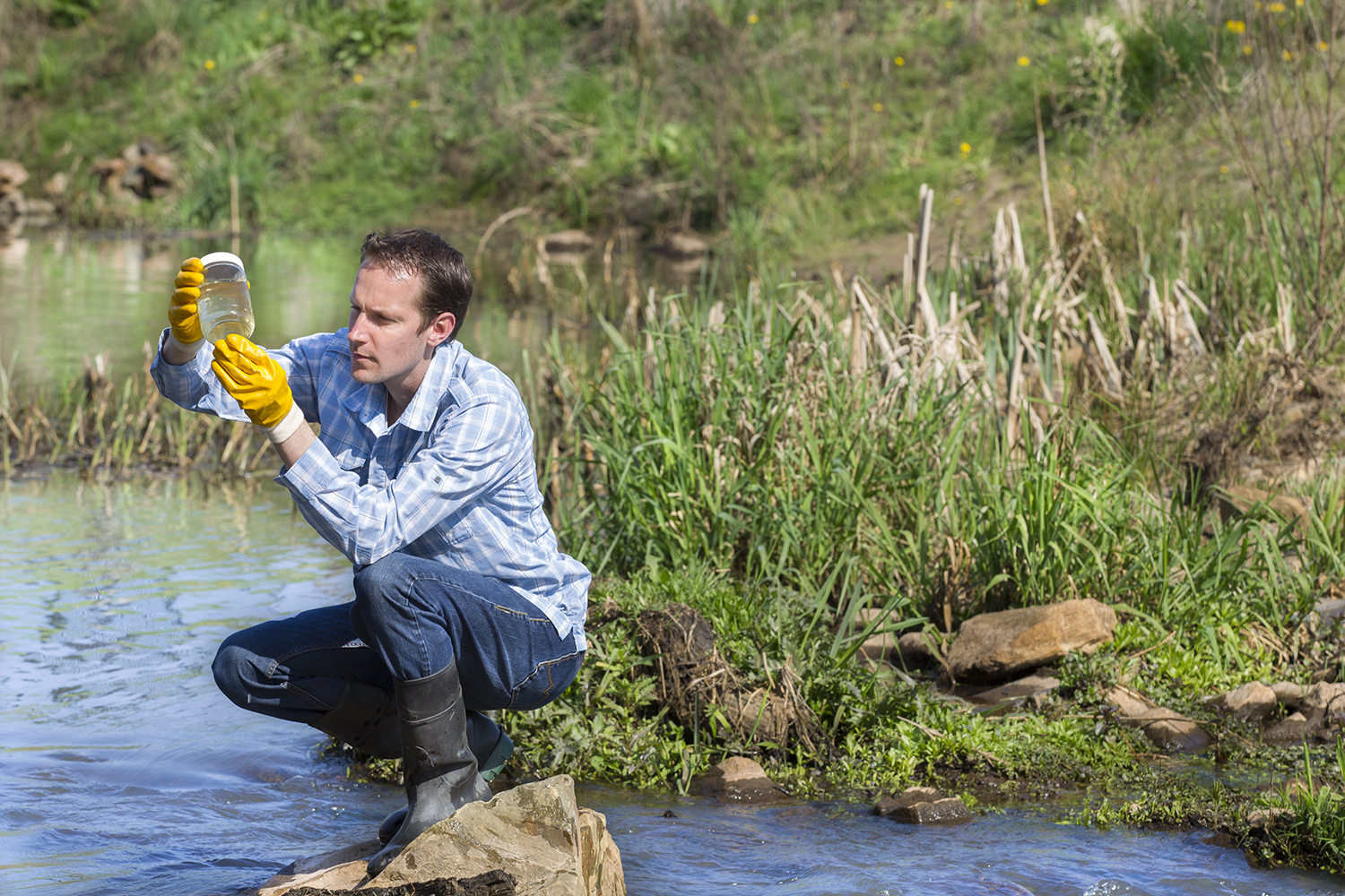 Researcher looks at water sample near a river
