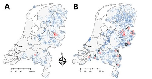 Figuur 2. Voorkomen van TBEV gebaseerd op serosurveillance in reeën in Nederland gedurende A:2010 en B:2017.