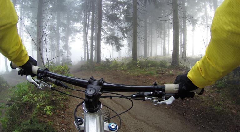 fietser in het bos