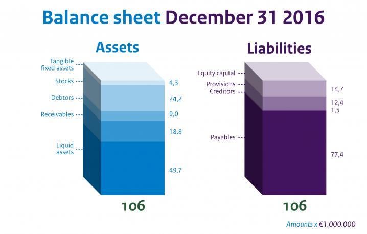 Infographic Balance sheet RIVM 2016